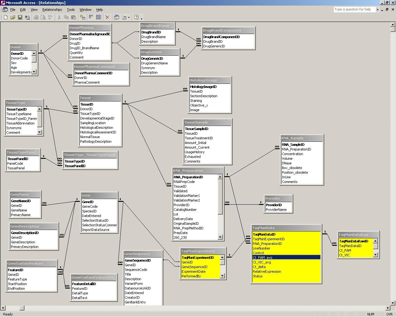 microsoft access relationship diagram  microsoft  free database diagram table relationships database table diagram tool